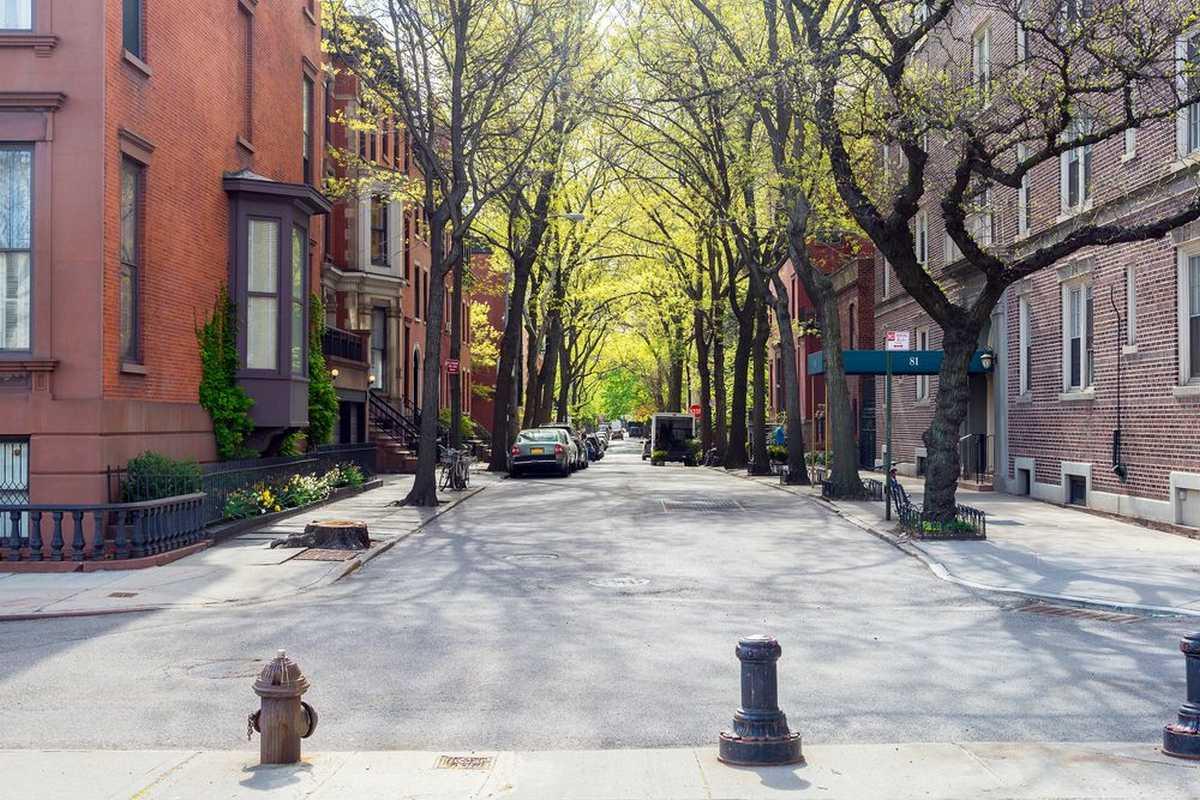 Bed-Stuy neighborhood street view of buildings and trees